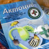 Актоцид инсекто-акарицид био (Киссон)