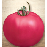Великий воин семена томата дет. ранний 100-110дн. плоско округ. 300-500гр. роз. (Семена Украины)