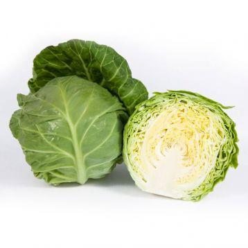 КС 1431 F1 (KS 1431 F1) семена капусты б/к средней 55-60 дн. 1,8-2 кг окр. (Kitano Seeds)
