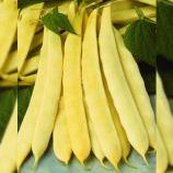 Супернано семена фасоли спаржевой кустовой средней 62 дн. желт. (Satimex КЛ)