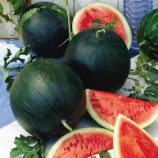 Орфей семена арбуза тип Шга Беби раннего 4-5 кг окр. (Украина СДБ)