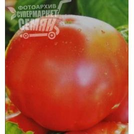 Дикая роза семена томата индет розового (Элитный ряд)