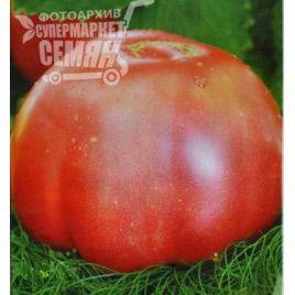 Микадо розовый семена томата индет розового (Элитный ряд)
