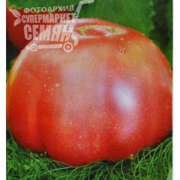 Томат Микадо розовый семена томата Элитный ряд [ индетерминантный, среднеранний] - купить, цена в Супермаркет Семян
