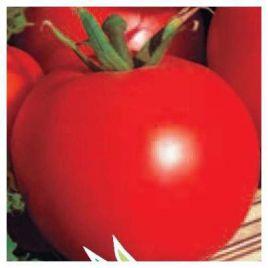 Спартак ( Солярис) семена томата дет (Элитный ряд)