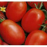 Победитель (Новичок) семена томата дет (Элитный ряд)