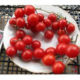 Синьорита семена томата дет черри (Элитный ряд)