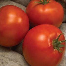 Линда F1 семена томата дет. среднего 85-90 дн. окр-прип. 240-300г (Sakata)