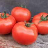 Монсан F1 семена томата полудет. ультрараннего 95-105 дн. окр. 160-180 г (Enza Zaden)