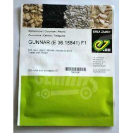 Гуннар F1 семена огурца партенокарп. ультраранн. 35-40 дн. 12-14 см (Enza Zaden)