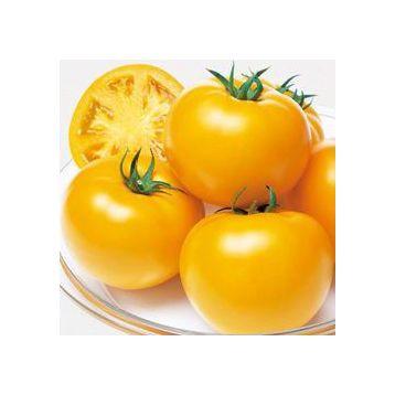 Ti-169 (Маматаро Голд) F1 насіння томату індет. жовтого (Takii Seeds)