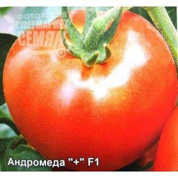 Андромеда F1 семена томата дет (Элитный ряд)