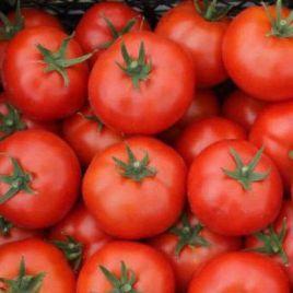 В 52 (W52) F1 семена томата дет. (Элитный Ряд) НЕТ СЕМЯН