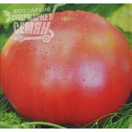 Малиновый гигант семена томата индет розового (Элитный ряд)