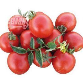1015 F1 семена томата дет. раннего 95 дн. слив. 90-100 гр. (Heinz/Lark Seeds)
