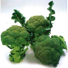 Нексос F1 (Наксос F1) семена капусты брокколи средней 75-80 дн. 0,4-0,6кг (Sakata)