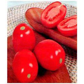 Перфект F1 семена томата дет. 55-60 гр. (May Seeds) НЕТ СЕМЯН