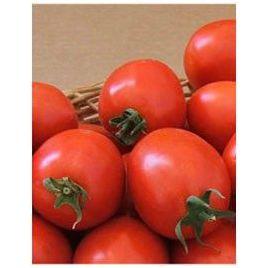 Лидия F1 семена томата дет. 65-70 гр. (May Seeds) НЕТ СЕМЯН