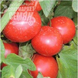 Вико (309) F1 семена томата дет. (Erste Zaden)