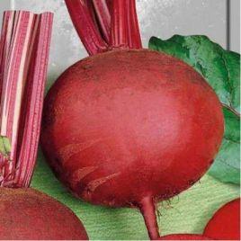 Детройт 2 семена свеклы столовой среднепозд. 100-110 дн. окр. (Hortus)