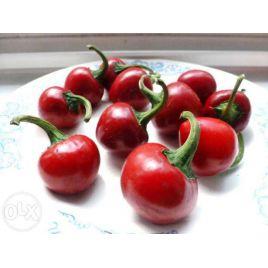 Черри красный семена перца острого 90 дн. окр. зел./красн. (Hortus)