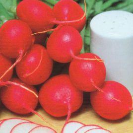 Гигант буттер семена редиса 24-30 дн. (Hortus)