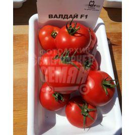 Валдай F1 семена томата полудет. раннего 130-160 гр. (Nunhems) НЕТ ТОВАРА