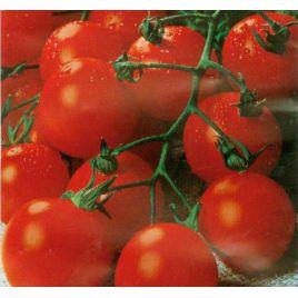 Садовая жемчужина семена томата дет. черри (Satimex)