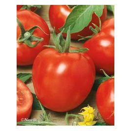 Альтруист F1 семена томата дет. 80-100 гр. (Гавриш) НЕТ ТОВАРА