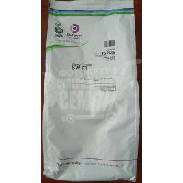 Свифт (Normal) семена лука репчатого озимого (Bejo)