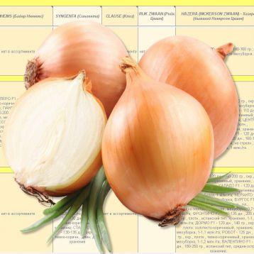 Каталог ЛУКОВ от Супермаркета Семян электронный