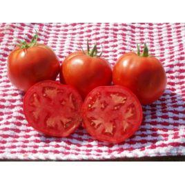 Лакота F1 семена томата полудет. 260 гр. (Dorsing Seeds)