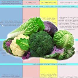 Каталог КАПУСТ от Супермаркета Семян электронный