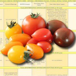 Каталог ДЕТЕРМИНАНТНЫХ ТОМАТОВ от Супермаркета Семян электронный