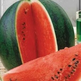 Шуга Бейби семена арбуза раннего 65-70 дней 5-7 кг окр. (United Genetics)