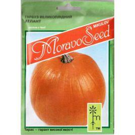 Атлант семена тыквы твердокорой плетистой средней 110-130дн. 18-70кг (Moravoseed)