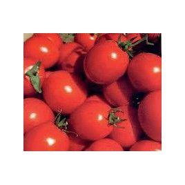 Оленка F1 семена томата дет. 90-120 гр. (Agromar) НЕТ СЕМЯН