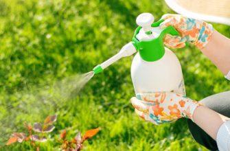 органический инсектицид биопрепарат биоинсектициды