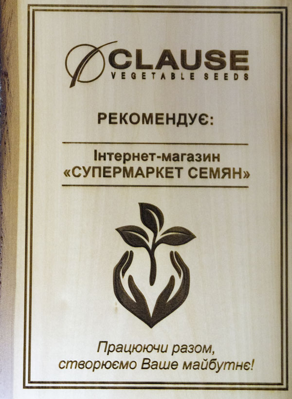 фото сертификат клоз