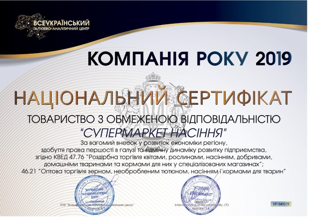 фото сертификат компания года 2019