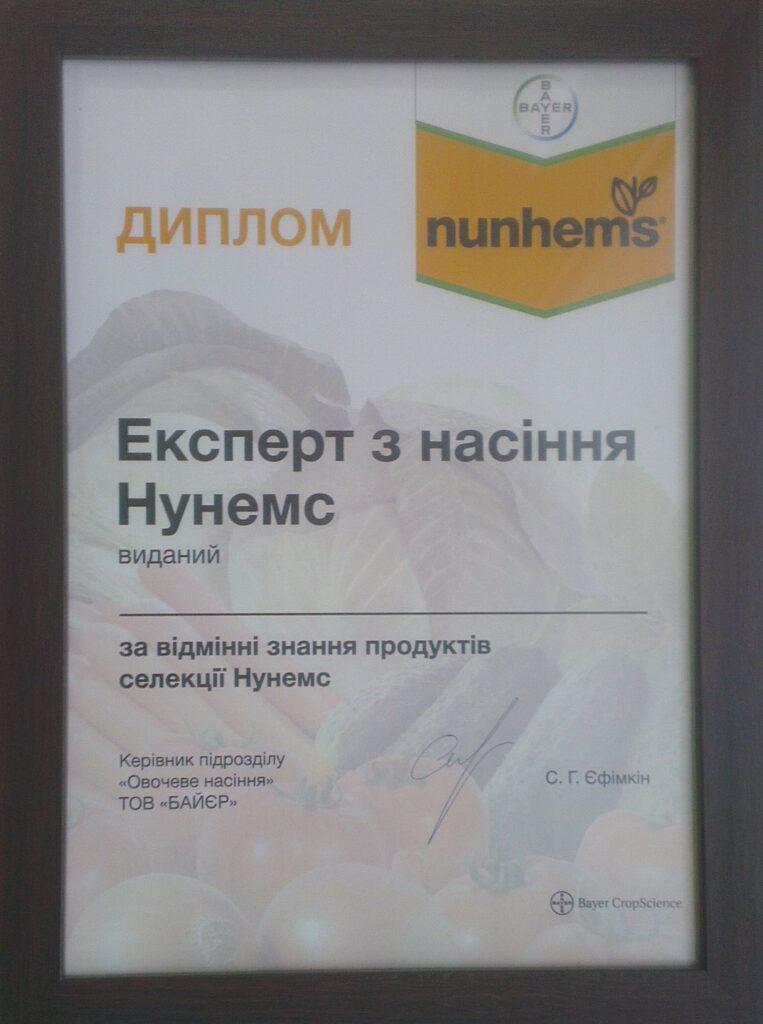 фото сертификат нунемс
