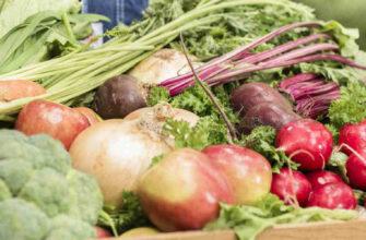 фото органические овощи