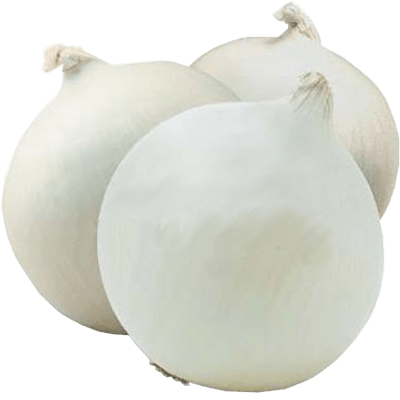 семена лука белого