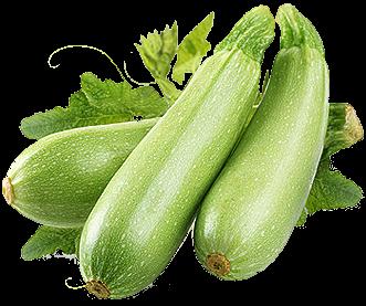 Заказать семена кабачков или цукини