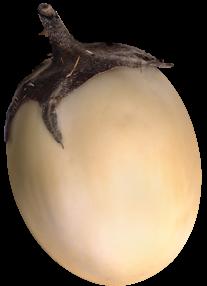 Купить семена необычных баклажан