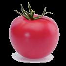 семена розовых томатов заказать в интернете