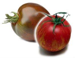 помидоры Ф1