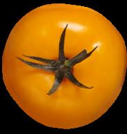 Купить семена томатов желтых или оранжевых