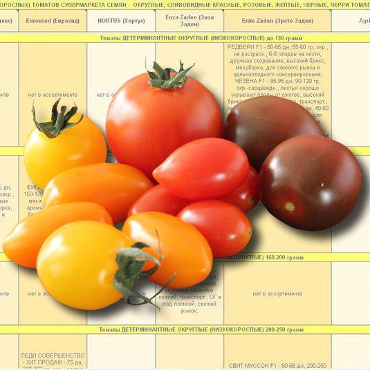 заказать каталог томатов детерминантных