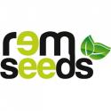 Rem seeds (Италия)